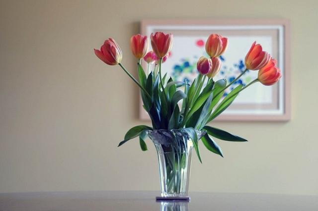 Vệ sinh bình cắm hoa